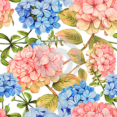 Free Hydrangea And Jasmine Floral Seamless Pattern Stock Image - 66343031