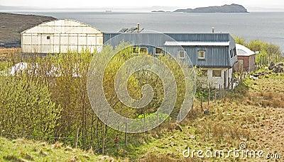 Hydroponicum auf der Westküste von Schottland.