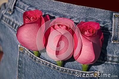 I Love Her Roses