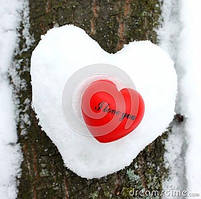 Free I Love You Stock Photos - 23106053