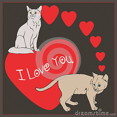 I love you - Cats collection Stock Photo