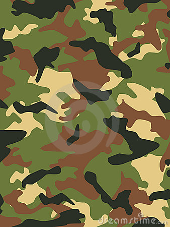 I militari cammuffano