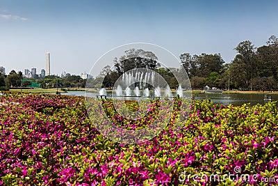 Ibirapuera Park and Sao Paulo Obelisk Stock Photo