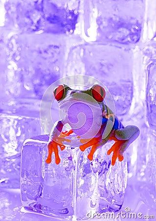 Free ICE Stock Photo - 1890820