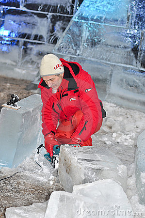 Free Ice Carving Stock Photos - 22908933