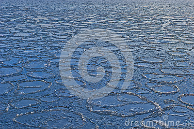 Ice circles on the sea