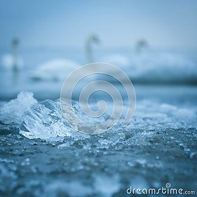 Ice closeup in the sea water