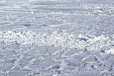 Ice covered sea