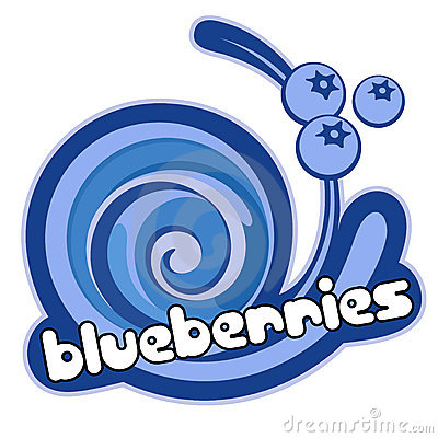 Ice cream blueberries