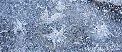 Ice crystals resembling butterflies