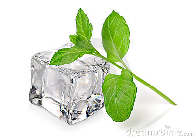 Ice cube with fresh mint