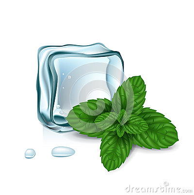 Ice cubes with mint leaves isolated