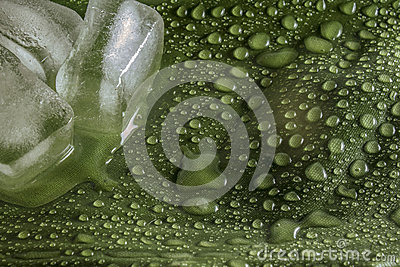 Ice cubes on wet green leaf