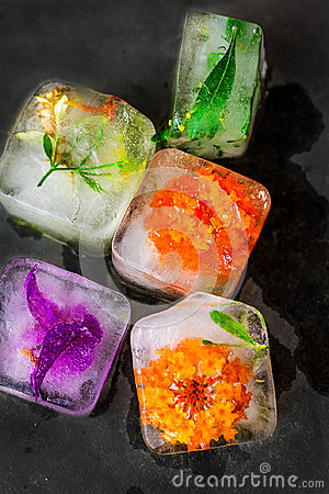 Free Ice Cubes With Frozen Colorful Flowers Herbs And Plants Melting On Dark Stone Background. Beauty, Face Skin Care Concept. Wellness Royalty Free Stock Image - 99117676