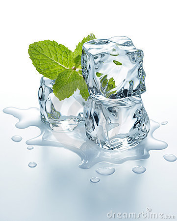 Free Ice Cubes With Mint Stock Photos - 21677193