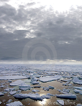 Ice floating in Arctic Sea