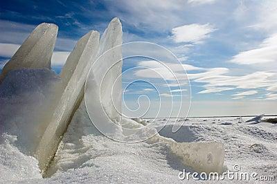 Ice floe.