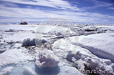 Ice floe greenland