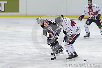 Ice Hockey Editorial Photography