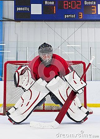 Free Ice Hockey Goalie Stock Image - 15259671