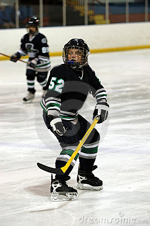 Free Ice Hockey Player Royalty Free Stock Photography - 1251337