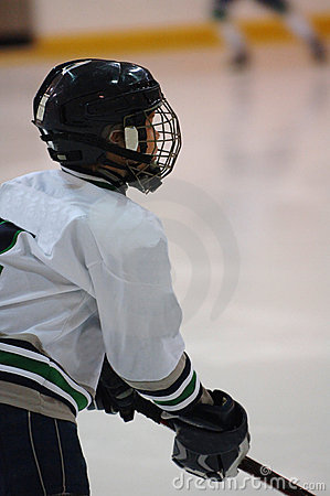 Ice hockey player profile