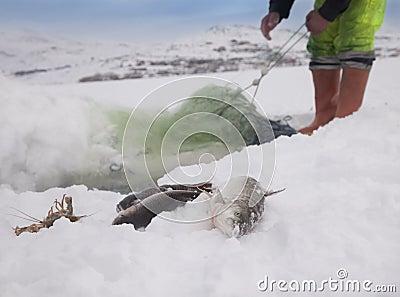 Ice lake fisherman