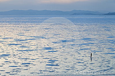 Ice on the sea