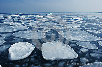 Ice on the sea to the horizon.