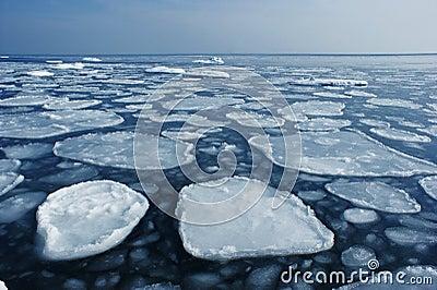 Ice on the sea to the horizon.