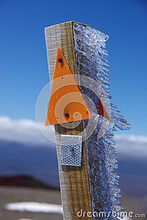 Ice on wooden post