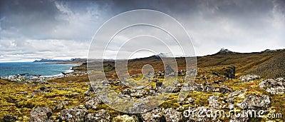 Icealnd coast panorama
