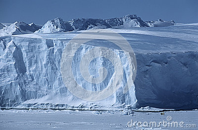 Iceberg da prateleira de gelo de Riiser Larsen do mar da Antártica Weddell com pinguins de imperador