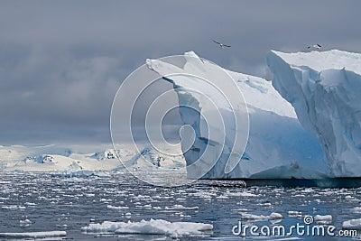 Iceberg scene