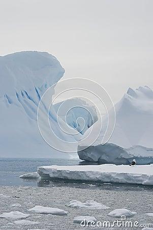 Icebergs in the Antarctic waters of winter.