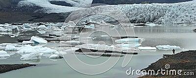 Icebergs in Lake