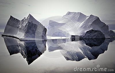 Icebergs Reflected in Still Waters, Antarctica