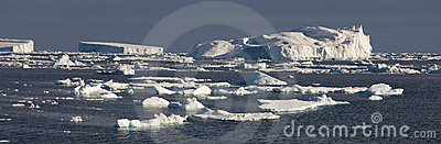 Icebergs - Weddell Sea - Antarctica