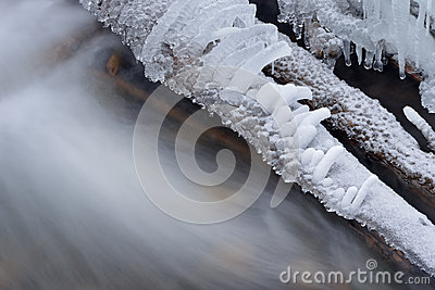 Iced Logs and Creek
