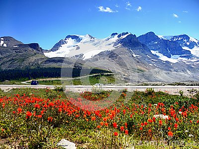 Canada, Banff Jasper National Park, Icefields Parkway