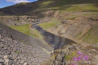 Iceland: Small river