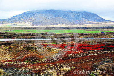 Icelandic lendscape: ground and volcano