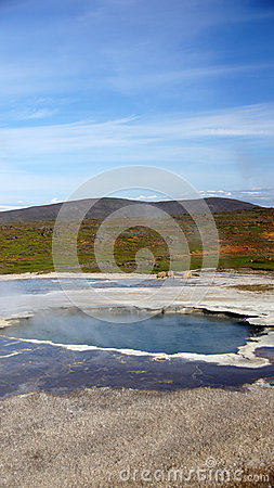Icelandic sheep and hot spring at Hveravellir