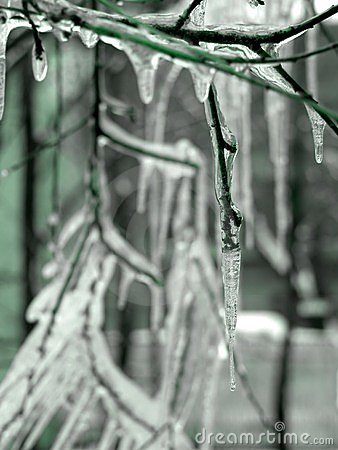 Free Icicles Royalty Free Stock Image - 2116
