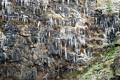 Icicles hanging from a cliff