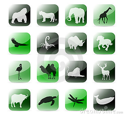 Icon set african animals