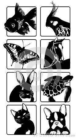 Icons with silhouettes of animals