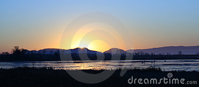 Icy marshland at sunrise