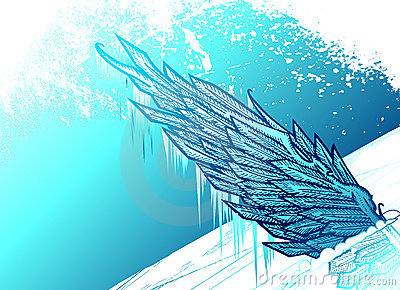 Icy wing