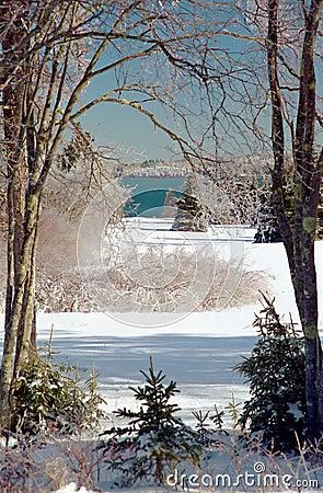 Free Icy Winter Wonderland Stock Images - 13195044